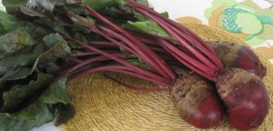 Red Beets from my garden