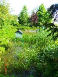 Bird house over a water garden