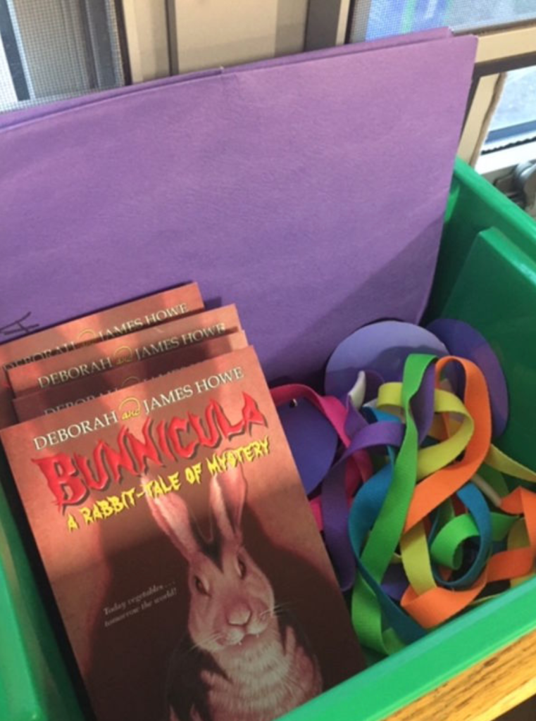 I created a classroom grant for reading book group books. Here is Bunnicula!