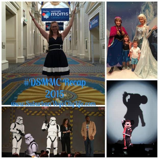 DSMMC Recap 2015