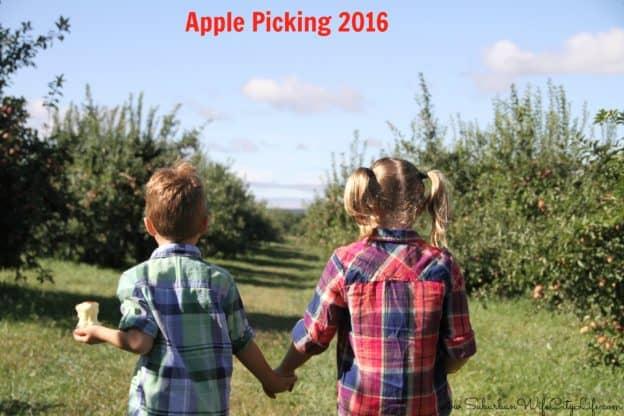 Apple Picking 2016