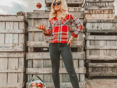 Where to go apple picking in the NY tri-state area
