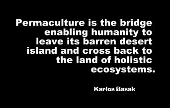 permaculture-bridge