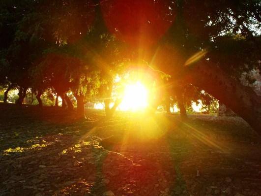 Un-rayo-de-sol