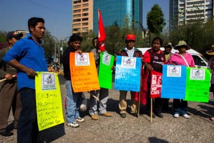 Libertad y justicia: marchan en apoyo a Aquila