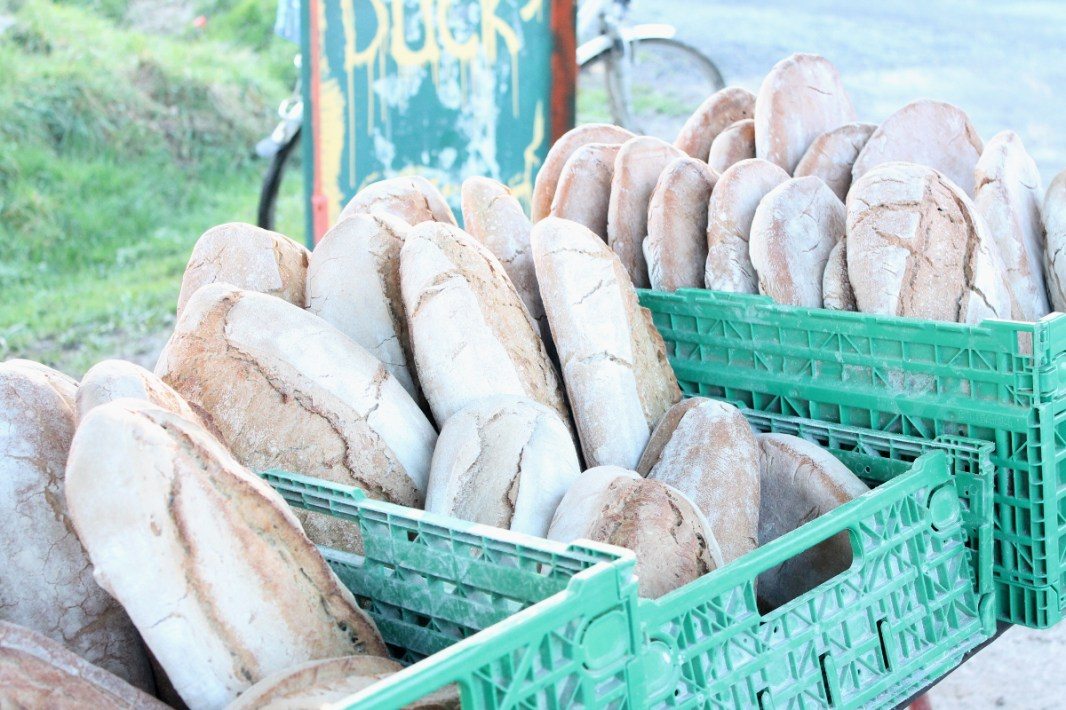 Producción local de pan