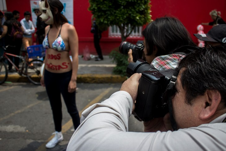 Fotografía: Luis Iborra