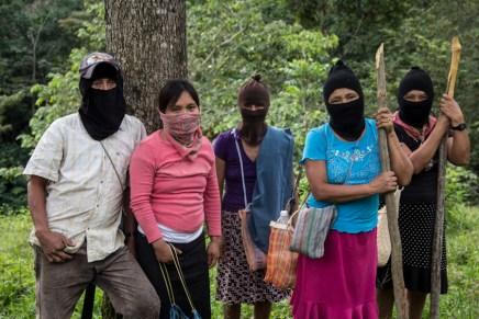 El dolor y la rabia en Chiapas