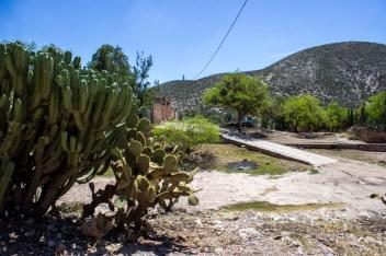 En septiembre de 2013, tras una batalla legal de 14 años, la SEMARNAT confirmó que la mina opera sin permiso ambiental. Pese a ello continúa operando