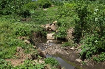 Hace 20 años esto era un río donde había peces y ajolotes, pero desde hace un año se convirtió en el desagüe del drenaje. Ahora está contaminado y causando la desaparición de las especies animales.