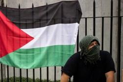 Elis_PalestinaMarcha_10_08_14-2