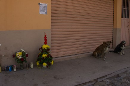 Uncertainty and Indignation regarding Investigation into massacre in Guerrero