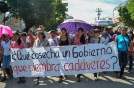 Qué cosecha un Gobierno que siembra cadáveres Foto: Andalucía Knoll