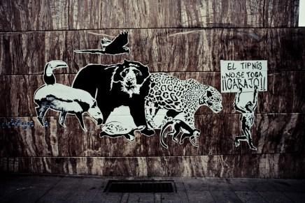 «Asfaltar Bolivia»: desarrollismo contra los pueblos