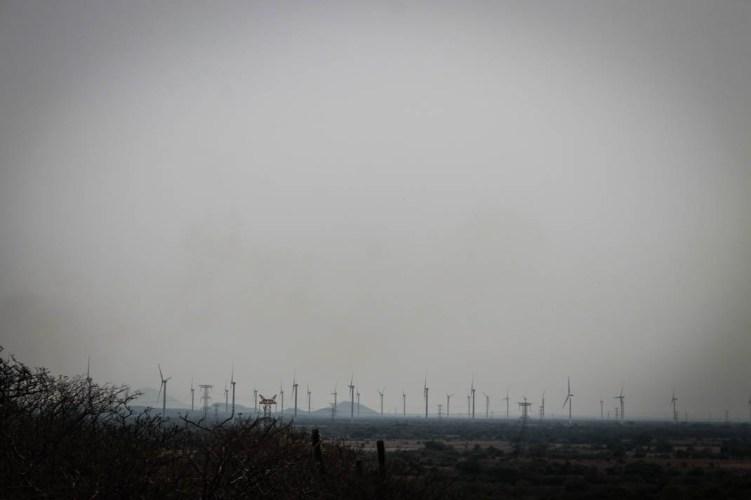 La desolación de los parques eólicos de La Ventosa en el camino para Santa María Chimalapa. Fotografía: Valentina Valle