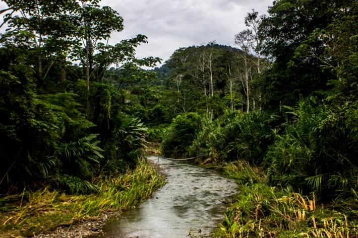 23 de junio del 2014. Tránsito de la Caravana Climática hacia Talamanca, Costa Rica. http://caravanaclimatica.org/