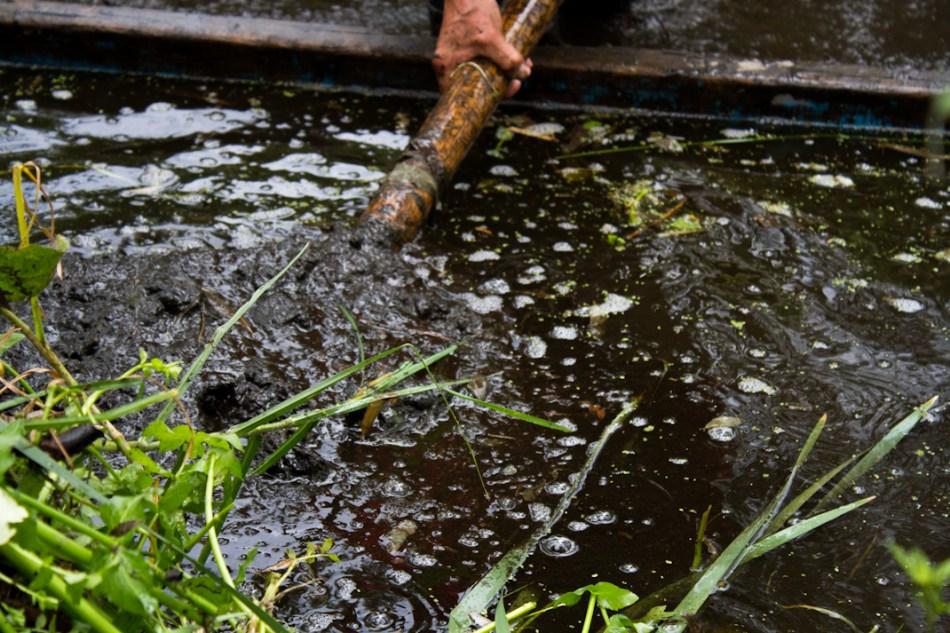Tejidos en el agua: agroecología de humedales en México-Tenochtitlán