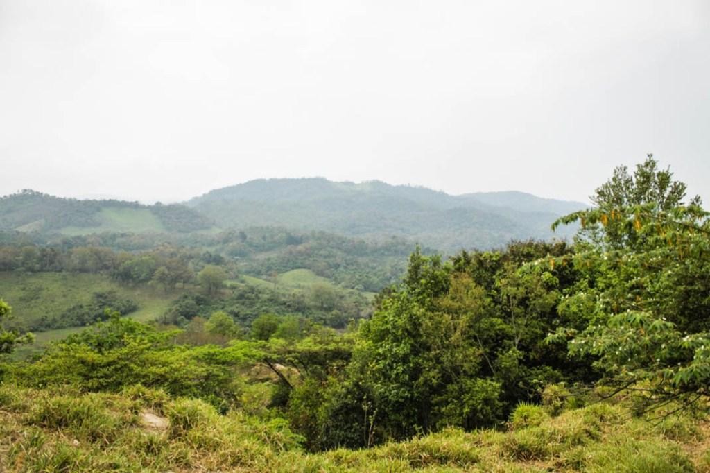 La riqueza del territorio Chimalapa. Santa María Chimalapa, fotografía Valentina Valle