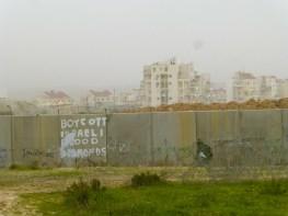 El muro de apartheid que separa Bil'in y el asentamiento Modi'in Illit. En 2007, Bil'in recuperó 30% de su tierra. Fotografía: Susana Norman