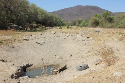 Tormenta perfecta: la sequía del Bajo Balsas