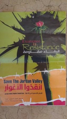 El cardo es el símbolo de resistencia para la campaña «Solidaridad con el Valle de Jordán». Atrás se miran las montañas que componen el inicio del país vecino, Jordania. Foto: Susana Norman