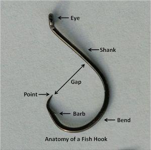 603px-Anatomyofafishhook