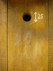 wood-texture-with-hole-3-1179588
