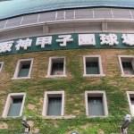 阪神甲子園球場の画像