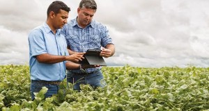 Agribusiness Management Job Opportunities