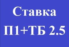 Ставка П1 (П2)+ТБ 2.5 (или ТМ 2.5). Как понять?