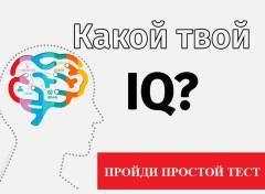 IQ-тест для игрока. Узнай о своих перспективах в БК