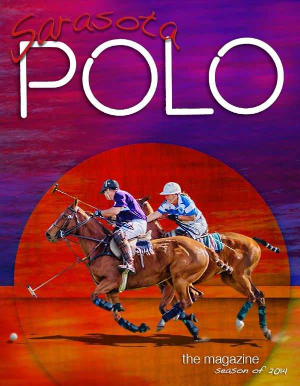 graphic art polo image