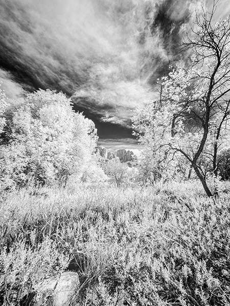 IR image cathedral rock in sedona
