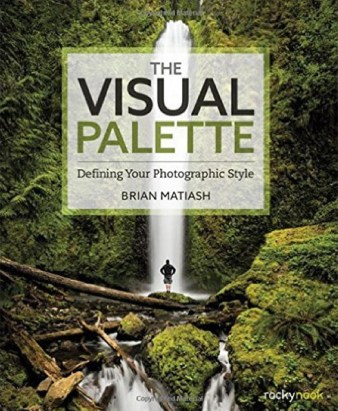 visual palette book cover