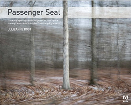 passenger seat book cover julianne kost