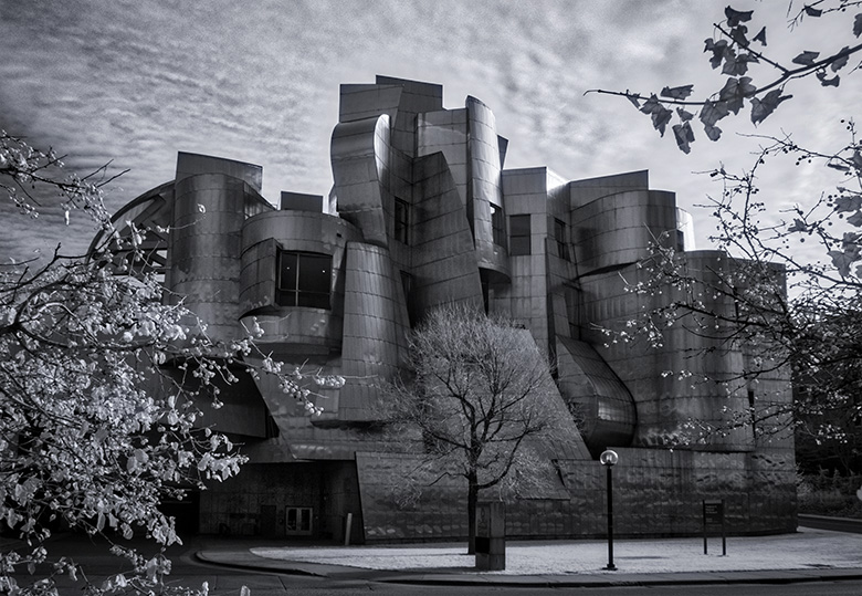 frederick weisman museum infrared photo
