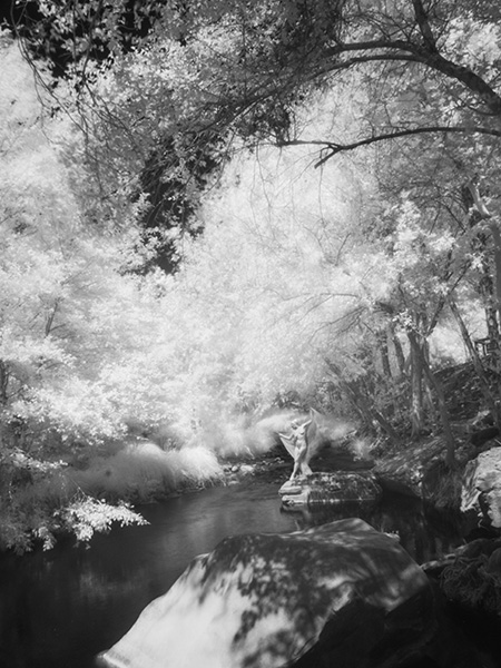 long view of the model on the creek infrared