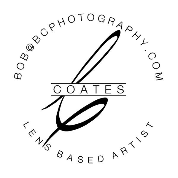 lens based artist logo graphic