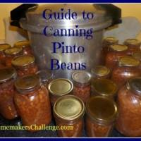 Pressure Canning 101 - Pinto Beans