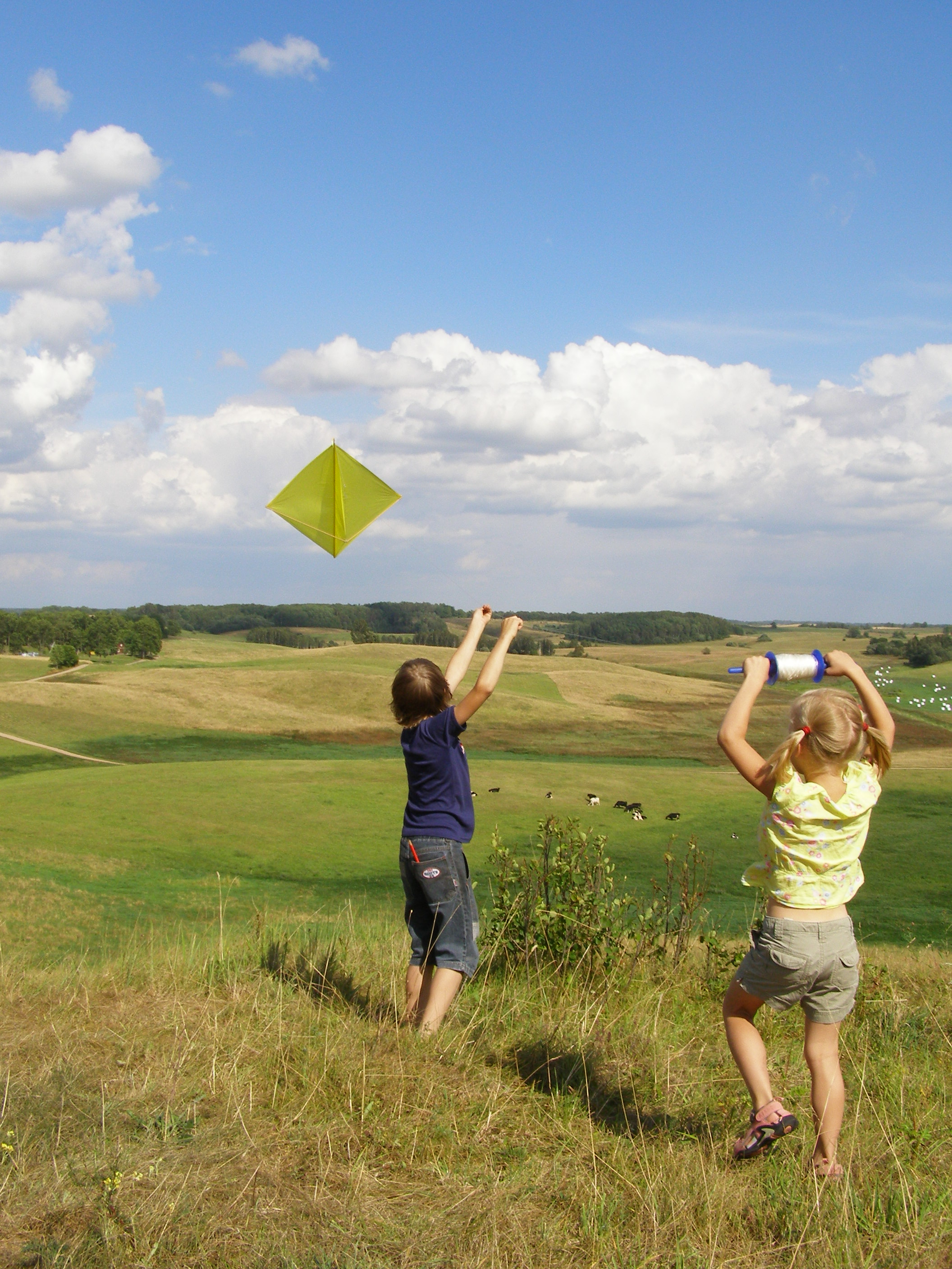 Kites Kids And The 2 Necessities For Success