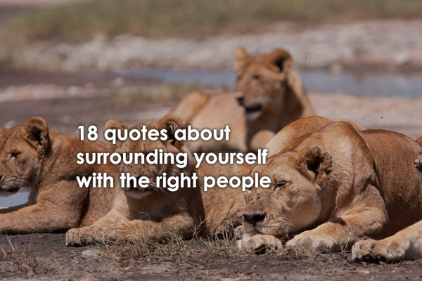 18 Powerful 'Surround Yourself With People Who' Quotes