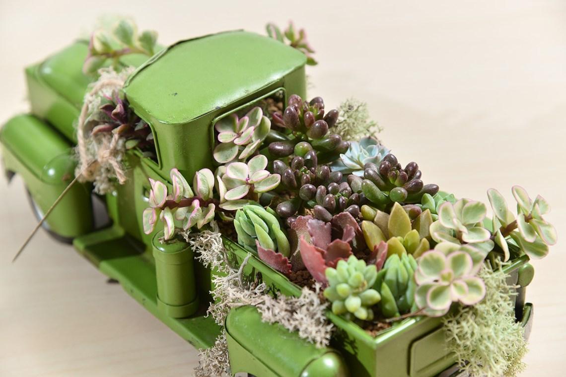 開幕誌慶 多肉植物車 送禮組盆 綠色車