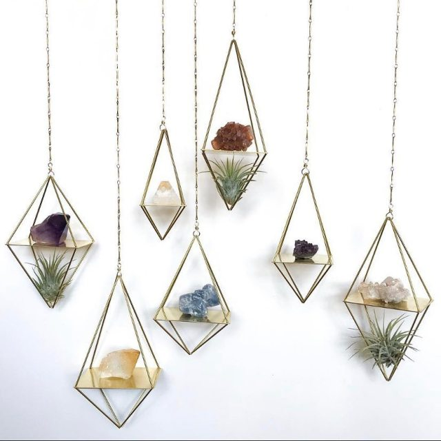 Air plants in geometric hanging planters
