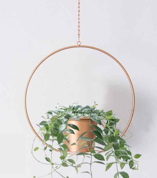 Metal succulent hanging planter