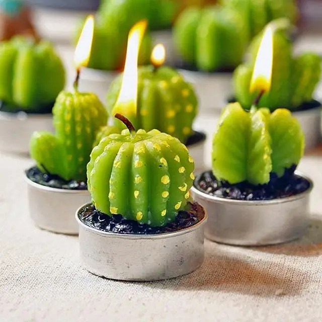 Did You Know There's Beautiful Succulent Candles