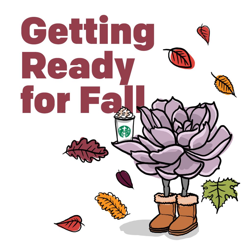 Autumn Cheat Sheet: Prepping for Seasonal Change