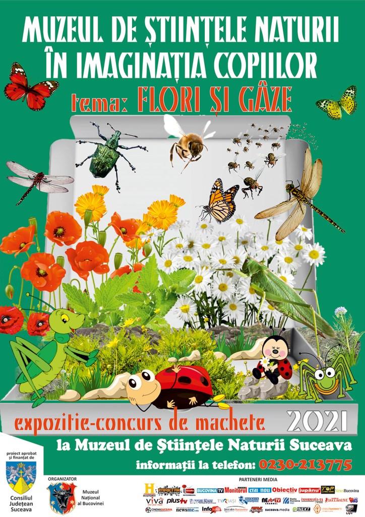 Muzeul de Științele Naturii în imaginația copiilor - Flori și Gâze