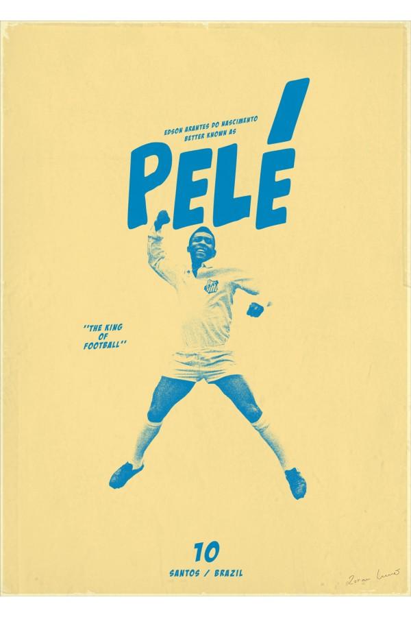 Poster do filme Troca de Pele