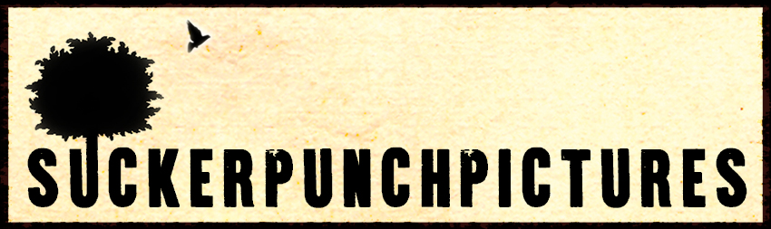 Sucker Punch Pictures banner logo