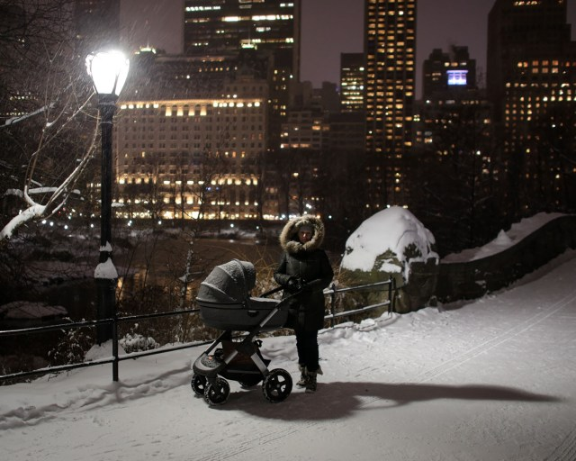 Snow falling in Central Park